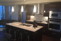 Downtown Living At its Finest. Ultra Luxury 2 bed 2 bath. The PEARL CONDO