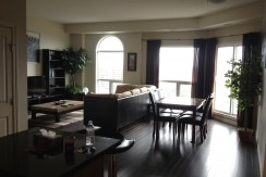 2 bedroom +den PENTHOUSE CONDO. DOWNTOWN. $2700