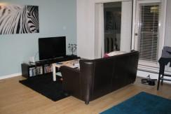 Cozy 1 bedroom-14th floor condo DOWNTOWN $1250