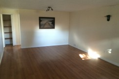 Huge 1 bedroom basement suite $800. Kensington