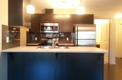 2 bedroom NEW condo ALBANY $1100