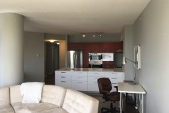 Downtown Executive furnished 2 bed 2 bath Condo, ICON II  $2275/month