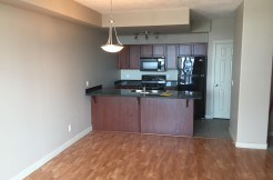 2 bed 2 bath condo Downtown $1649