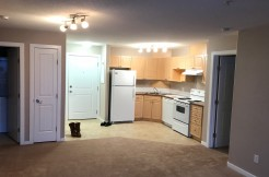 2 bed 2 bath condo. Spruce Grove. $1100/month