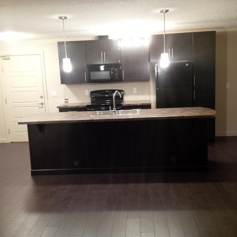 2 Bedroom 2 Bath Newer Condo, NorthEnd. Schonsee way $1250/month