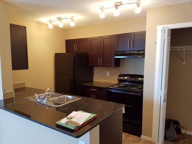 New 2 bedroom 1 bath condo. Crystellina Nera, $1000