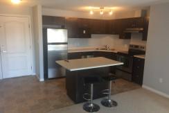 2 bed 2 bath condo. Terwillegar. $1175 Pet Friendly – Edmonton